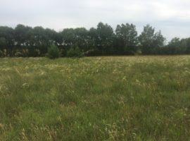 Земельный участок в селе Небрат