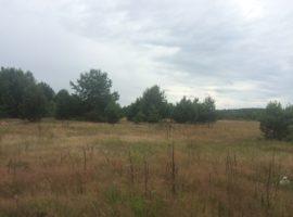 Козинці, земельна ділянка