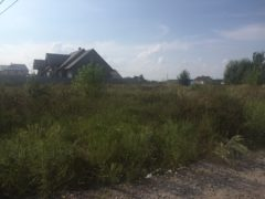 Крячки, земельна ділянка під забудову,14 соток