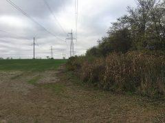 Продам земельну ділянку 1.6 гектара с. Віта-поштова
